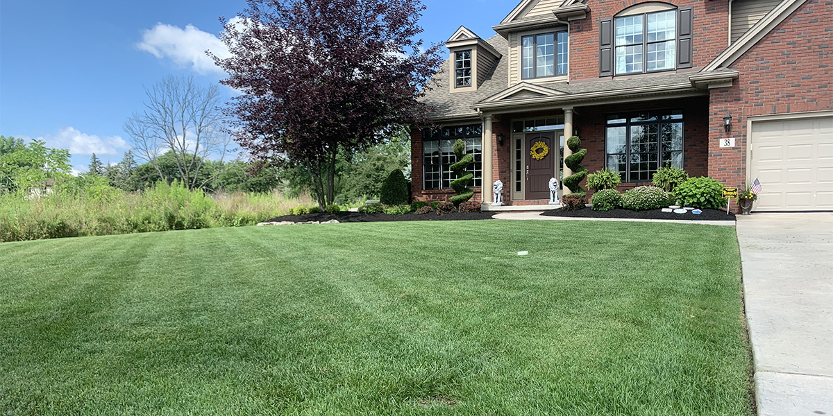WNY Services, Grand Island lawn maintenance, Grand Island lawn mowing, lawn mowing, lawn care, Grand Island lawn care, commercial lawn mowing, residential lawn mowing